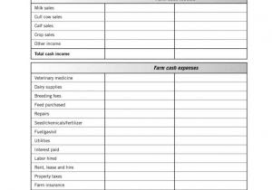 Life Insurance Calculator Excel Spreadsheet And Auto ...
