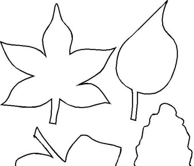Yaprak Kaliplari
