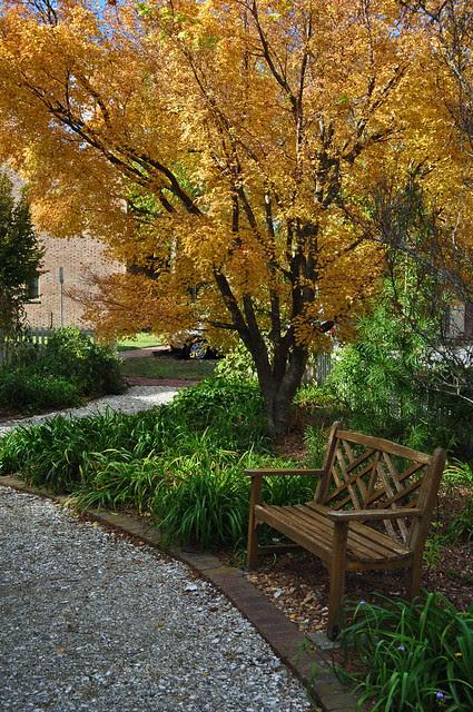 Adams Garden (9)