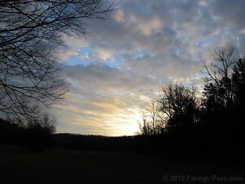 Morning sun in the hayfield - FarmgirlFare.com