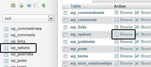 Browse wp_options in phpMyAdmin