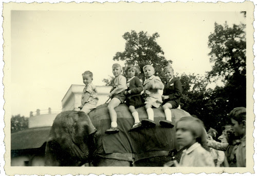 Children on an elephant 01