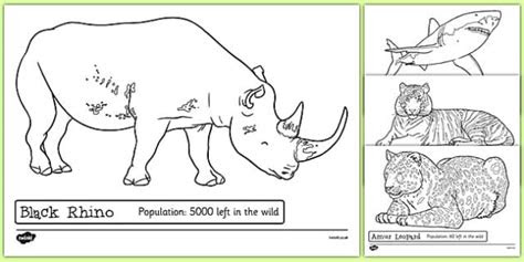 endangered animals colouring sheets endangered animals