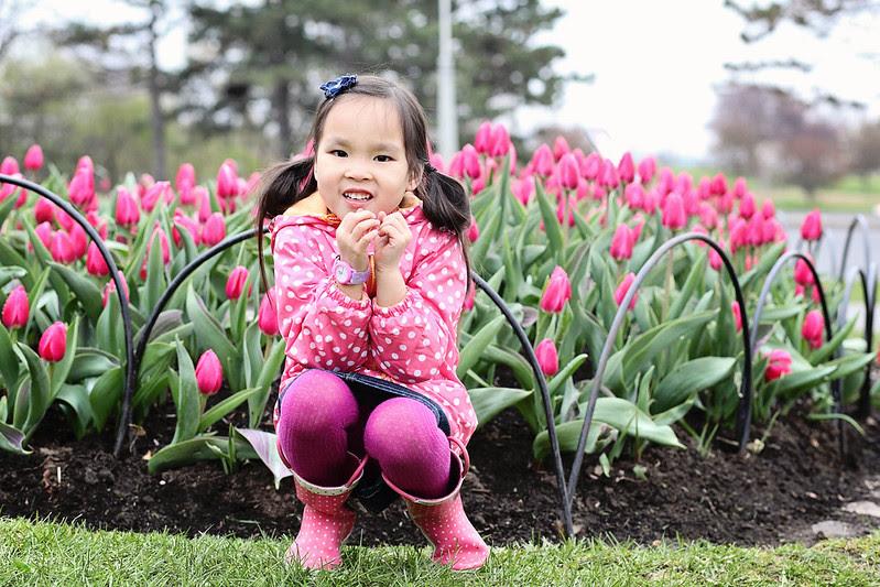 ottawa tulip festival - 2012