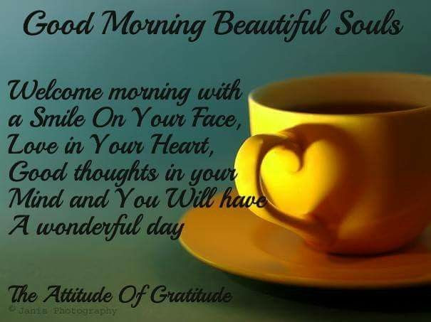 Good Morning Beautiful Souls Welcome The Morning Pictures Photos