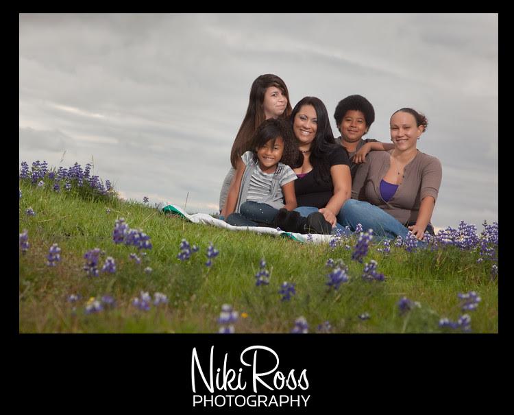 family-purplelupin