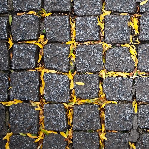 Autumn waffle por Éole
