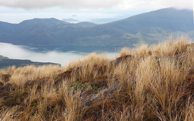 Lake Rotoaira from below Ketetahi Hut