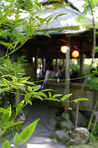 Sigma 17-70mm f/2.8-4.5 DC Macro in Japanese Tea Garden