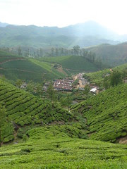 tea pickers residence