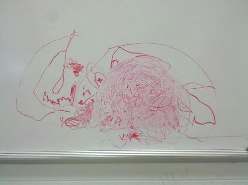 fish + spider-man, by evan