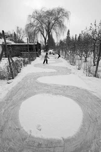 backyard-rink-path