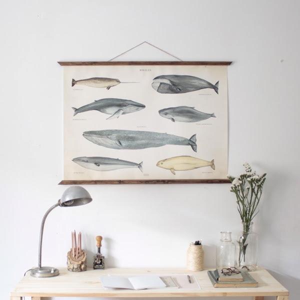 Arminho-poster-whales2