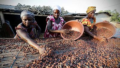 Ivory Coast and Ghana unite to fight cocoa price volatility