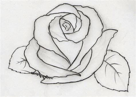 image result  easy pencil drawings  beginners