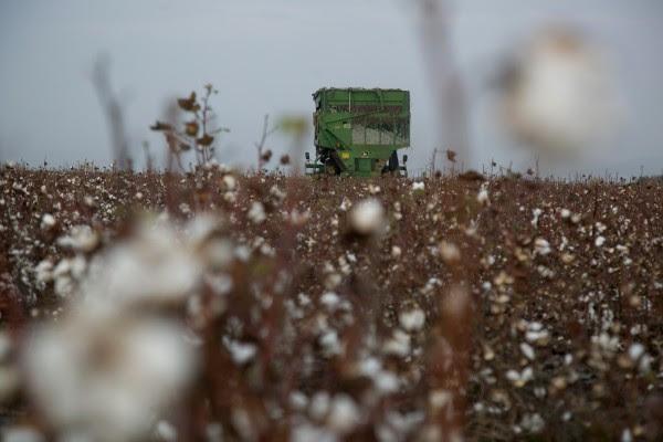 Ανοίγει ο δρόμος για δωρεάν ρεύμα σε αγρότες - Ποιοι οι δικαιούχοι