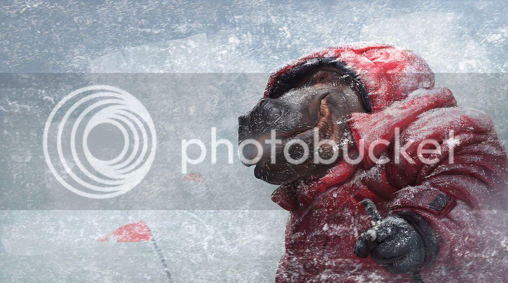 photo hippo hiker close up blog.jpg