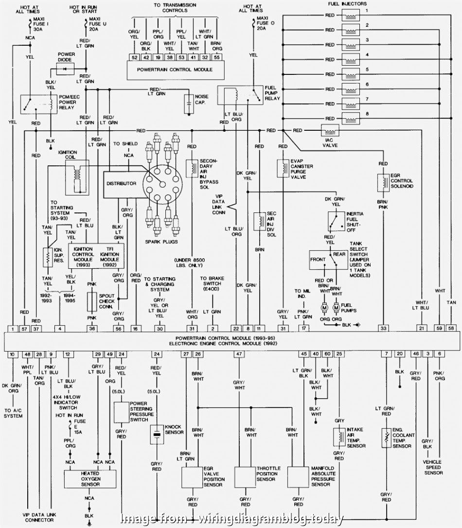 Ford F650 Starter Wiring Diagram Nice 1996 Ford F, Wiring ...