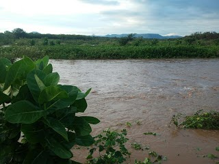 Choveu 45mm na cidade de Viçosa