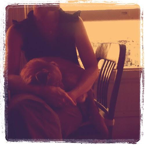Stella & Molly by tweetsweet