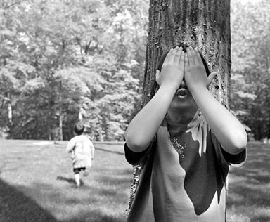 Kembali Ke Pohon