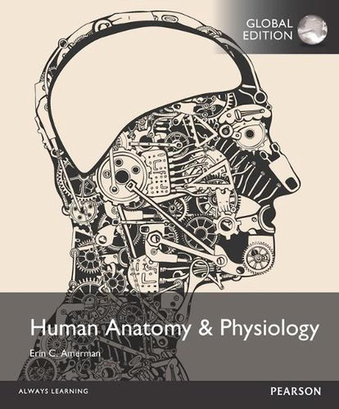 Human Anatomy & Physiology, Global Edition Paperback