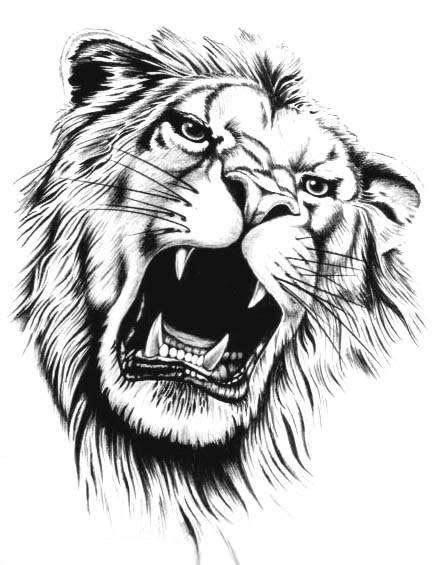 super black  white roaring lion head tattoo design