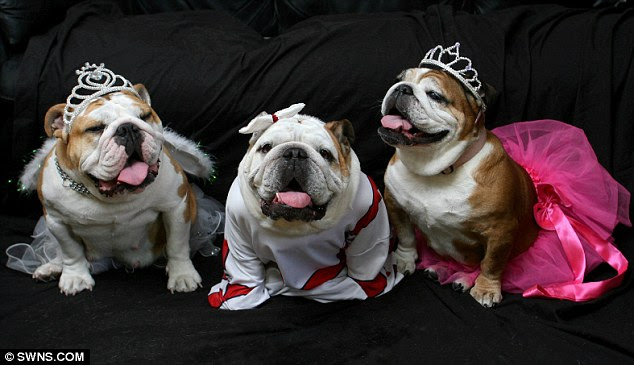 Smile: From left to right are Princess Tia, Lady Lola and Baby Gracie