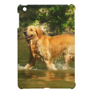 Golden Retriever in Water iPad Mini Covers