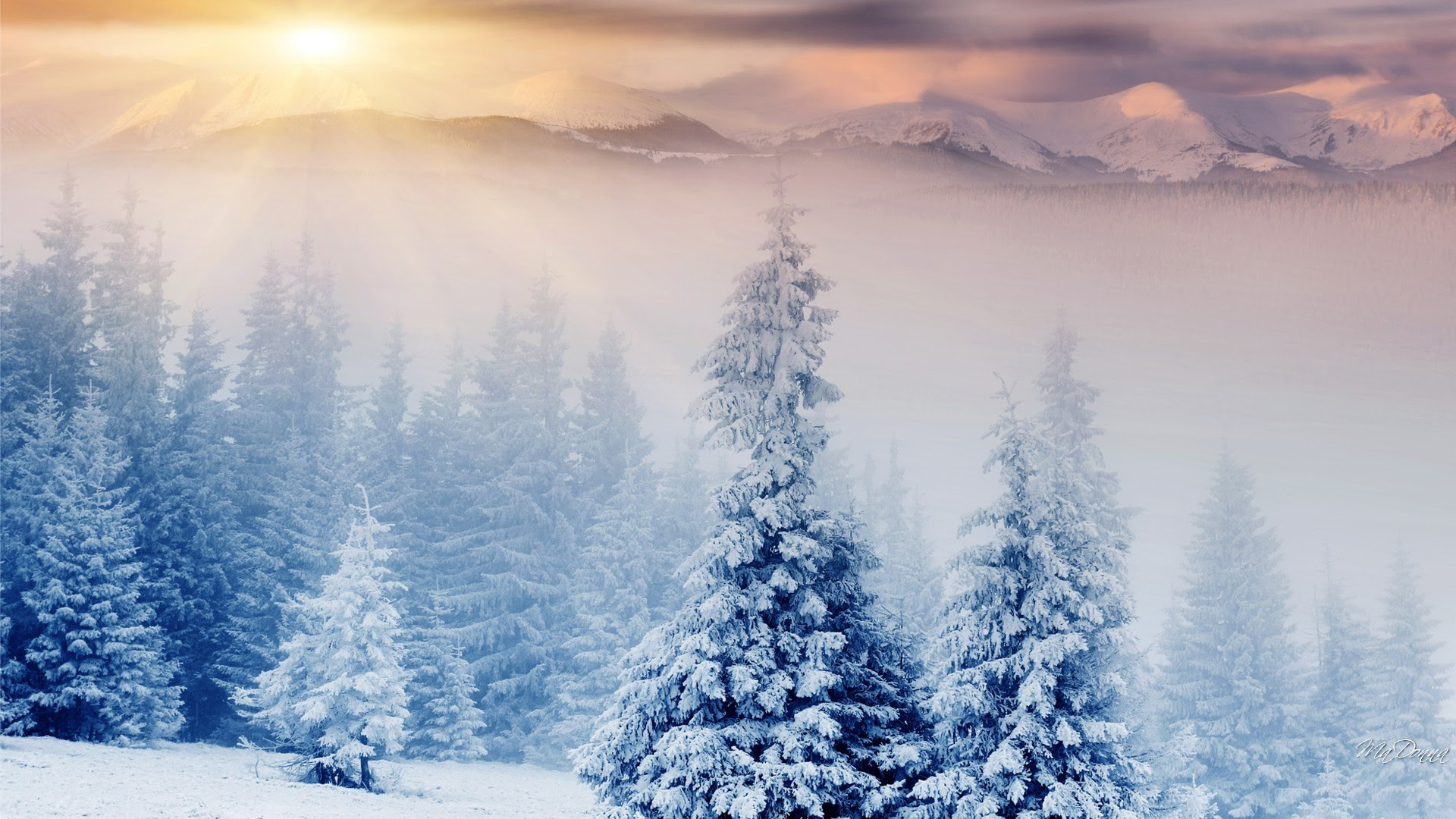 10+ Winter Desktop Backgrounds For Mac ...