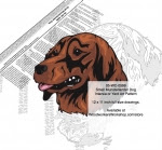 Small Munsterlander Dog Intarsia or Yard Art Woodworking Plan - fee plans from WoodworkersWorkshop® Online Store - Small Munsterlander dogs,pets,animals,dog breeds,intarsia,yard art,painting wood crafts,scrollsawing patterns,drawings,plywood,plywoodworking plans,woodworkers projects,workshop blueprints