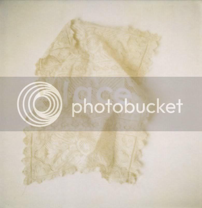 polaroid blog