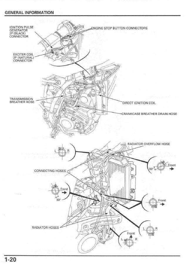 Diagram Honda Crf 150f Service Diagrams Full Version Hd Quality Service Diagrams Gillenwiringm Repni It