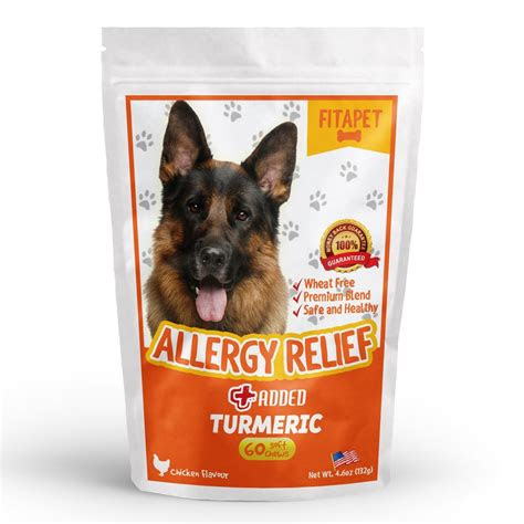 dog foods  skin allergies pets life