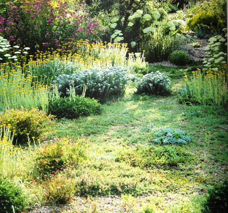 Planting Design For Dry Gardens 5 Irish Garden Plant Society