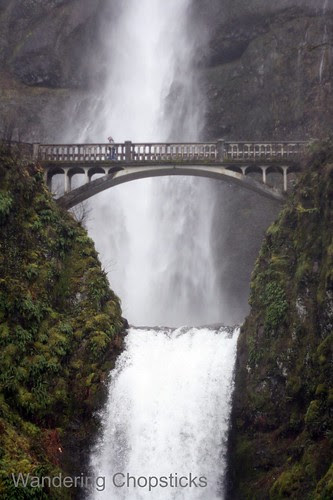 4 Multnomah Falls (Winter) - Columbia River Gorge - Oregon 6