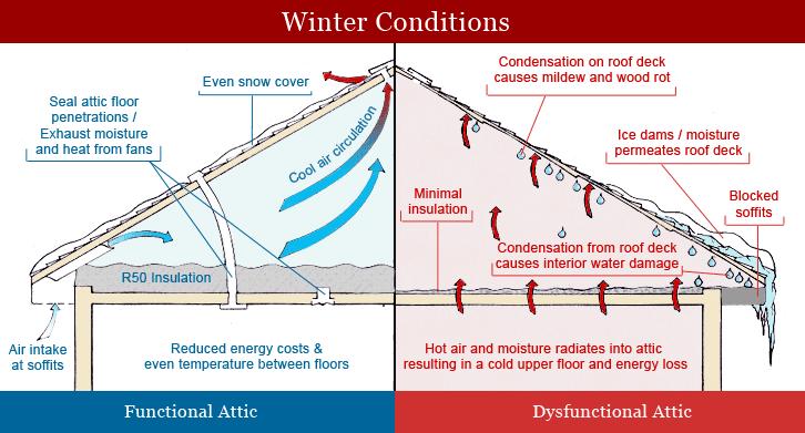 insulation diagram_winter