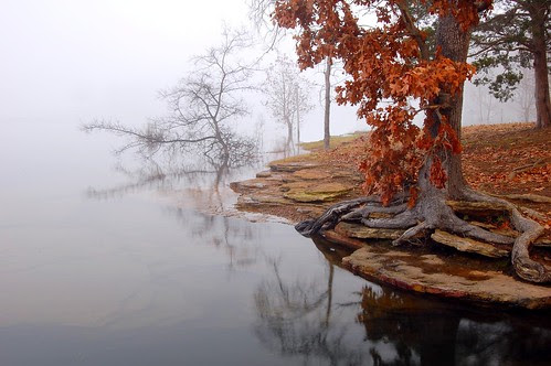 Greers Ferry Lake por photog19
