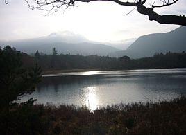 Im Killarney National Park