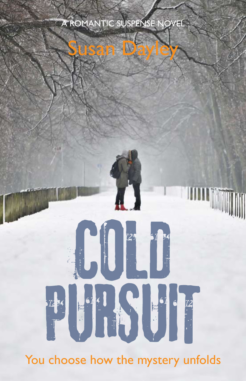 http://susandayley.files.wordpress.com/2013/01/coldpursuitcover.jpg