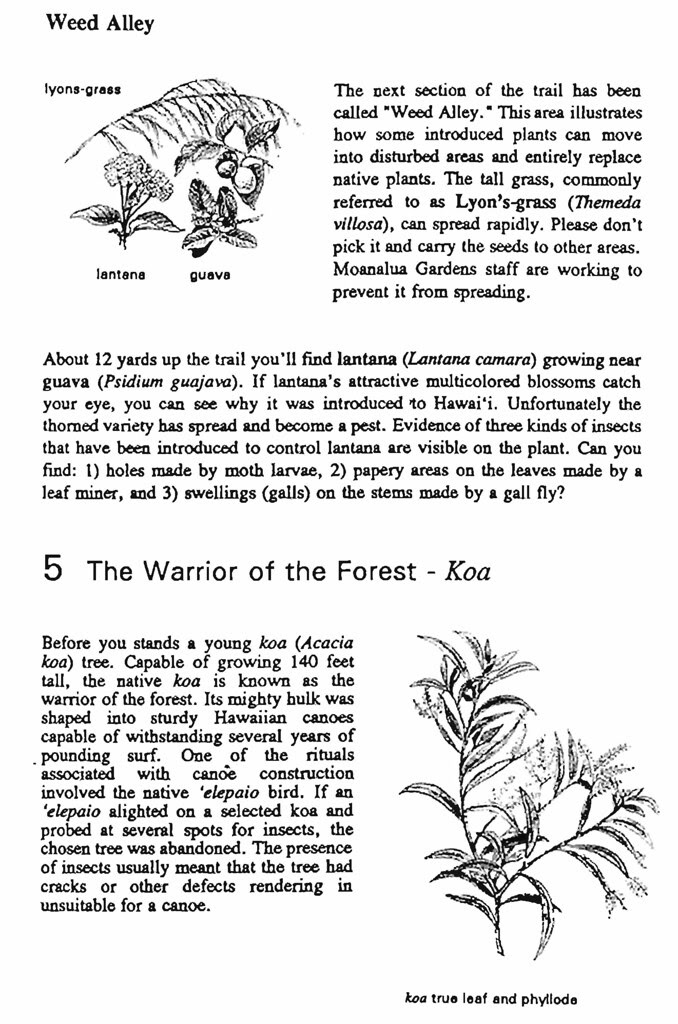 Pages from A_Walk_Into_the_Past_Page_04