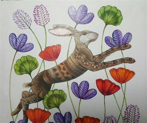 images  millie marottas animal kingdom