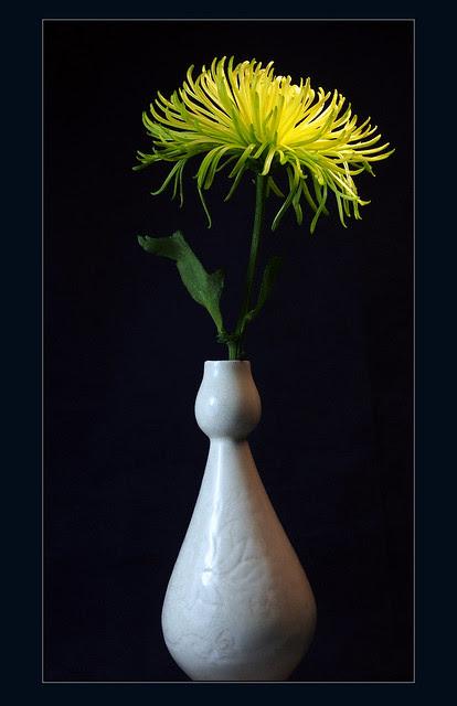 flower and vase
