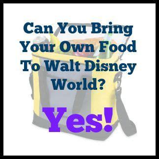 bring   food  walt disney world
