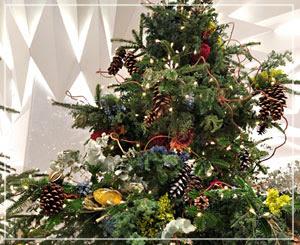 日本橋三越のカラフルなクリスマスツリーがとても可愛かったんです。