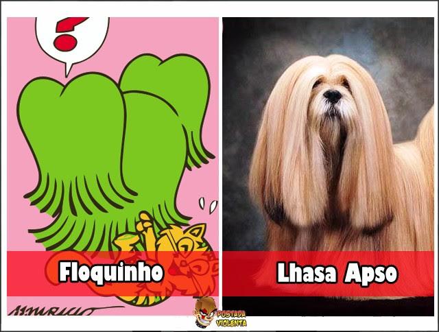 rac3a7a-floquinho-lhasa-apso