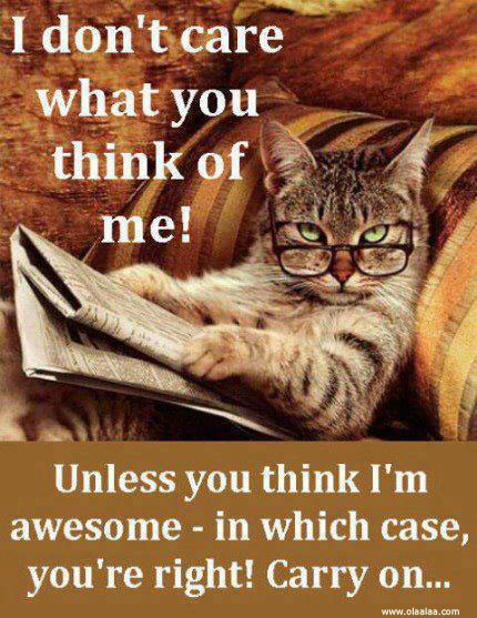 I Dont Care What You Think Of Me Funny Quote Quotespicturescom