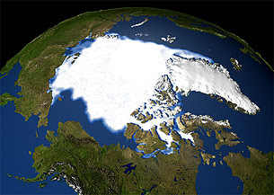 Observed Sea Ice 1979