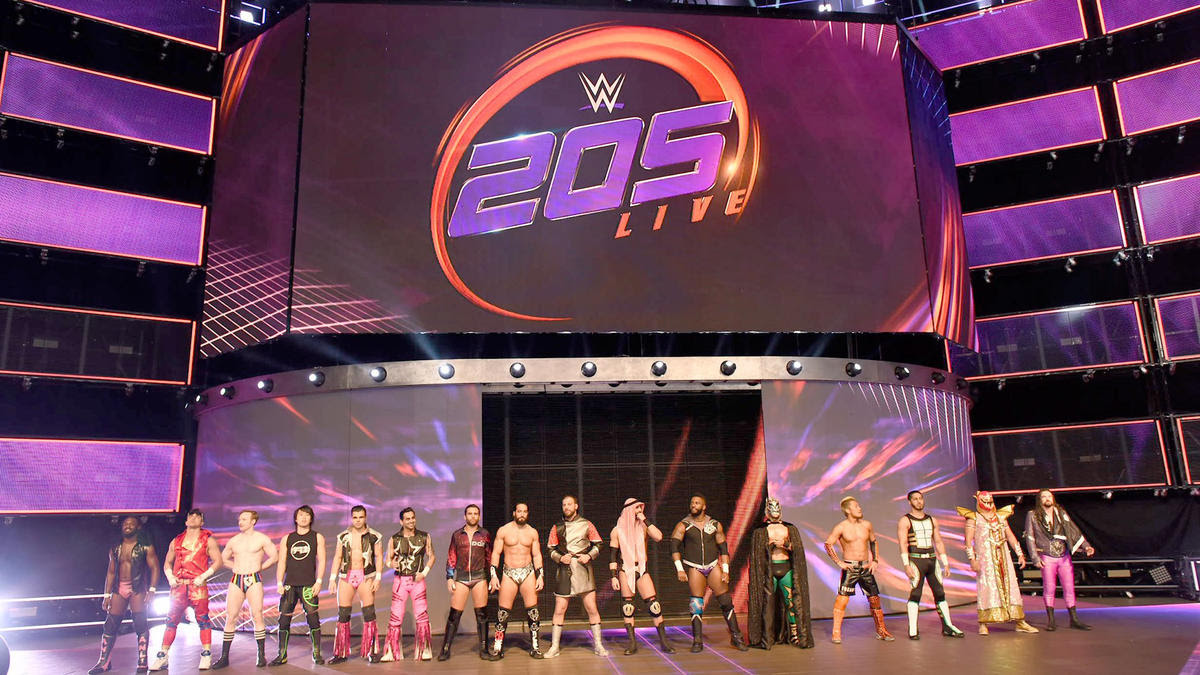 The Cruiserweights are introduced on WWE 205 Live.
