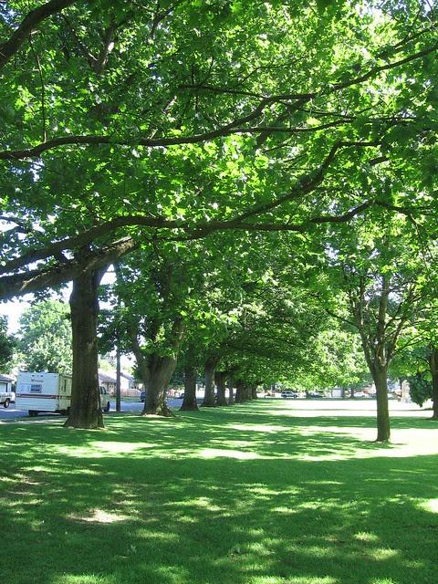Kenton Park
